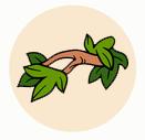 Owl Habitat Icon