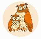 Owl Life Span Icon