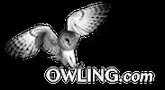 Owling.com Logo