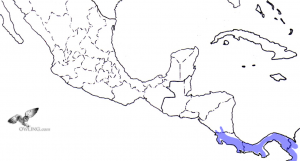 Bare-shanked Screech-Owl Range Map