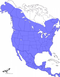 Great Horned Owl Range Map
