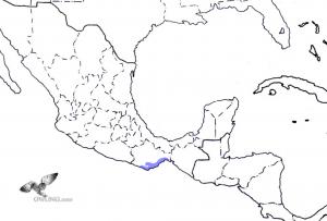 Oaxaca Screech-Owl Range Map