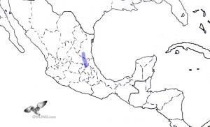 Tamaulipas Pygmy-Owl Range Map